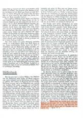 Seite 3 der an HITLER gerichteten Erklärung der ZEUGEN JEHOVAS
