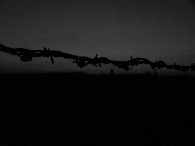 schwarz/weiß-Foto vom Stachdeldraht auf der Frontseite des Konzentrationslagers Auschwitz - Brikenau bei Nachteinbruch 2005